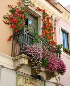 Apartments on Sicily
